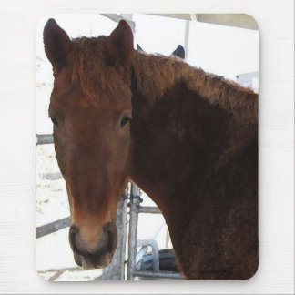 Big Eyes Red Tennessee Walking Horse -  TWH Mouse Pad