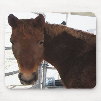 Big Eyes Red Tennessee Walking Horse - TWH Mousepad