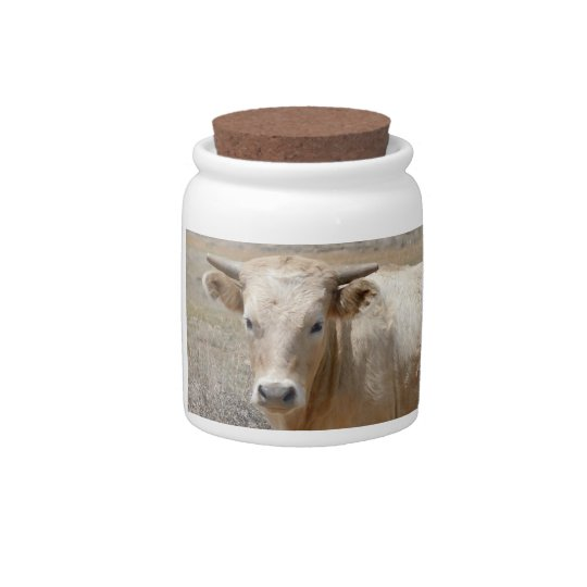 Big Eyes White Charolais Cattle Spare Change Bank Candy Jars