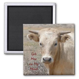 Big Eyes White Charolais Cattle - Western Fridge Magnet