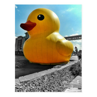 Big Famous Rubber Duck In Erie PA Postcard