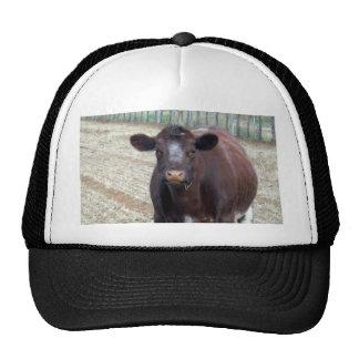 Big_Fat_Brown_Cow,_ Trucker Hat