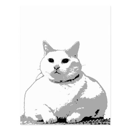 Big Fat Cat Postcard