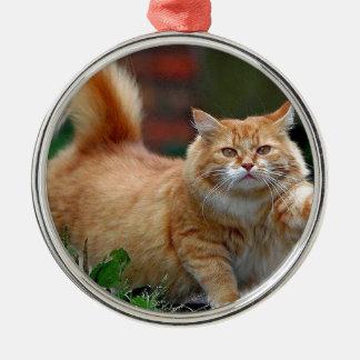 Big Fat Orange Cat Ornament