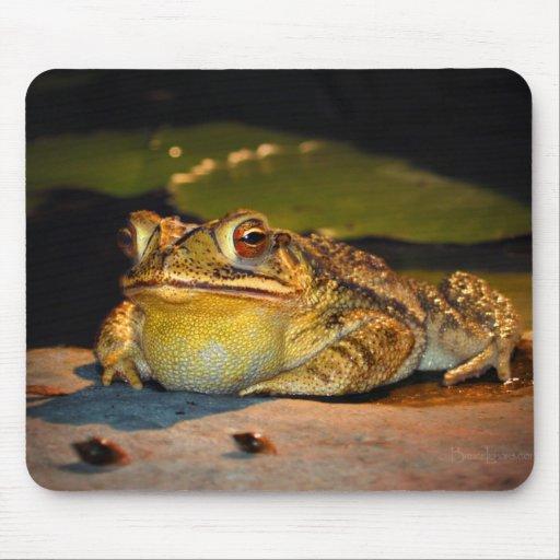 Big Fat Toad Mouse Pad