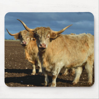 Big_Fawn_Highland_Cows,_ Mouse Pad