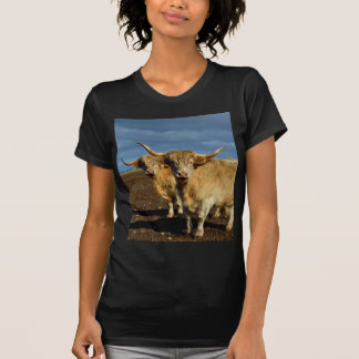 Big_Fawn_Highland_Cows,_ T-Shirt
