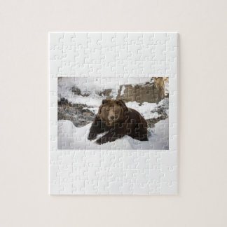Big Female Grizzly Bear In The Snow Jigsaw Puzzle