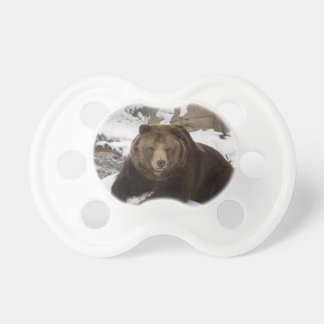 Big Female Grizzly Bear In The Snow Pacifier
