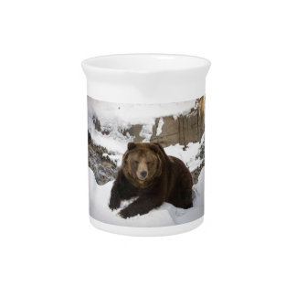 Big Female Grizzly Bear In The Snow Pitcher