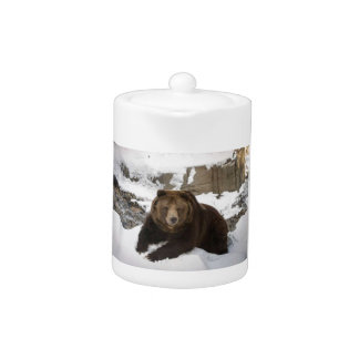 Big Female Grizzly Bear In The Snow Teapot