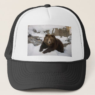 Big Female Grizzly Bear In The Snow Trucker Hat