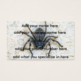 Big  Female Huntsman Spider, Business Card