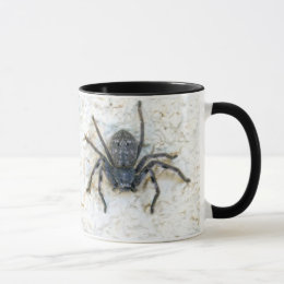 Big  Female Huntsman Spider, Mug