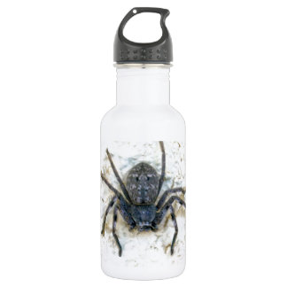 Big Female Huntsman Spider, Stainless Steel Water Bottle