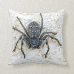 Big Female Huntsman Spider, Throw Pillow