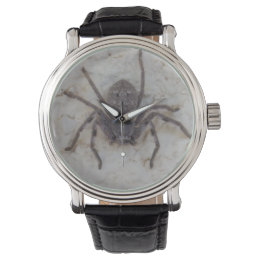 Big Female Huntsman Spider, Wristwatch
