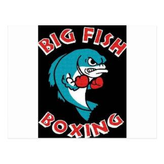 BIG FISH BOXING,BOXING,FISH,FIGHTING FISH,BOXERS, POSTCARD