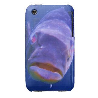 Big Fish iPhone 3 Case