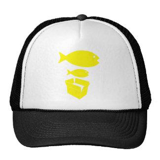 Big Fish Little Fish Cardboard Box Mens Blue Shirt Mesh Hat