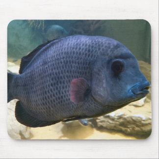 Big Fish Mousemat