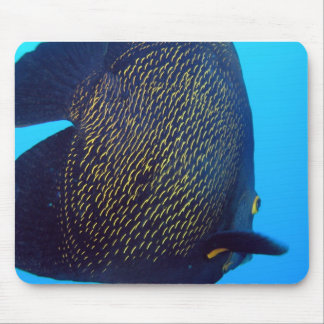 Big Fish Mouse Pad