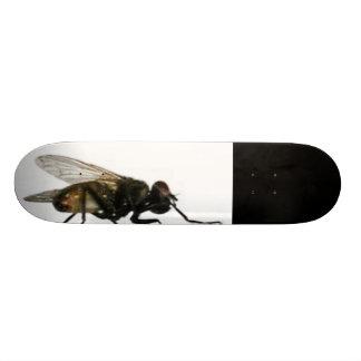 Big fly skateboard
