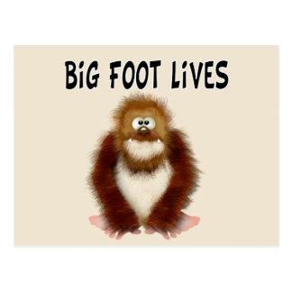 Big foot Lives Postcard