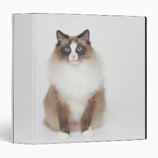 Big Furry Cat Binder