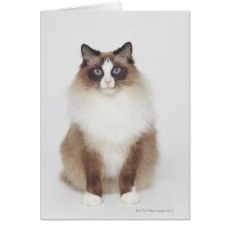 Big Furry Cat Card