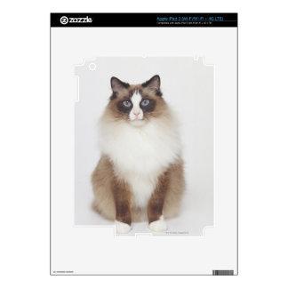 Big Furry Cat Skin For iPad 3