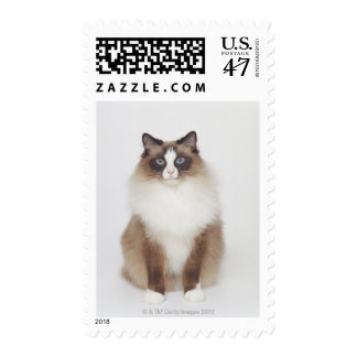 Big Furry Cat Stamp