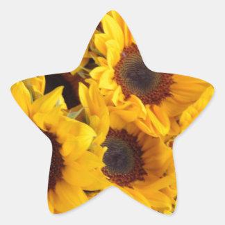 Big giant sunflowers star sticker