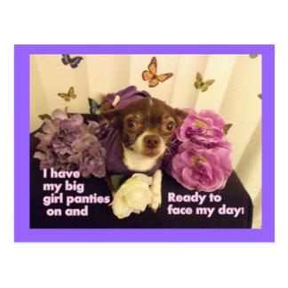 Big girl Panties Chihuahua Card