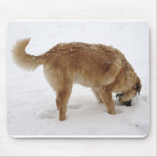 Big Golden Retriever Puppy Snow - Ranch Dog Lover Mouse Pad