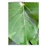 Big Green Leaf Card