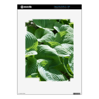 big green leafy plant decal for the iPad 2