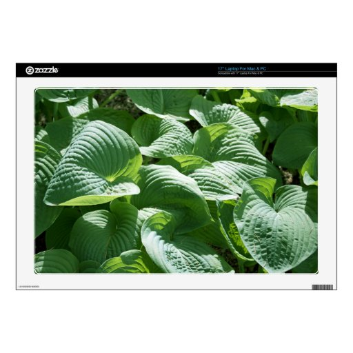 big green leafy plant decals for laptops