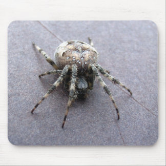 big grey spider mouse pad