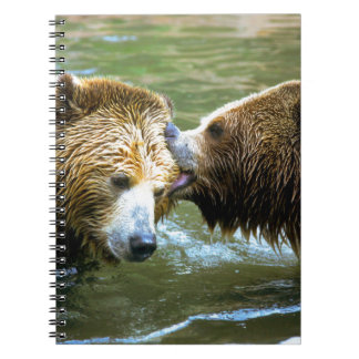 Big Grizzly Bear Kiss Note Book