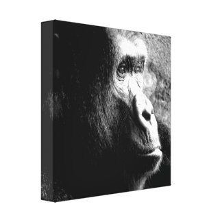 """Big Guy Deep in Thought"" Gorilla Wrapped Canvas"