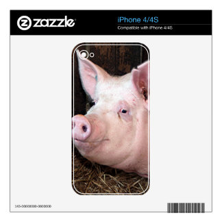 Big happy pink pig skin for iPhone 4