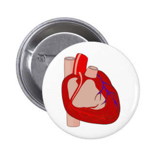 Big Hearted Pinback Button