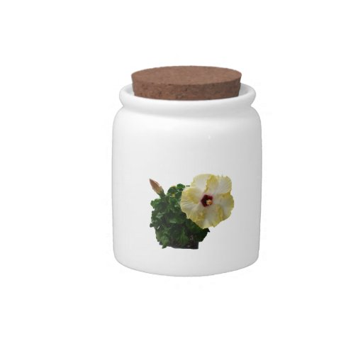 Big Hibiscus Flower with foliage Candy Jar
