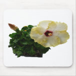 Big Hibiscus Flower with foliage Mousepad