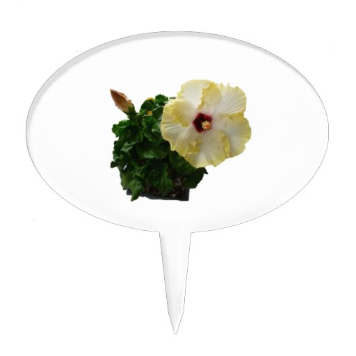 Big Hibiscus Flower with foliage Oval Cake Topper
