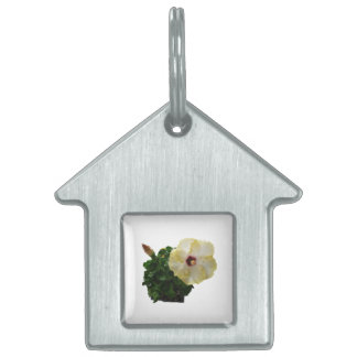 Big Hibiscus Flower with foliage Pet Tags