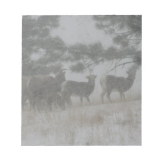 Big Horn Kid in the Snowstorm Notepad