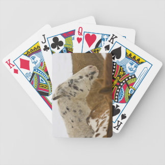 Big Horn Mountains, Horses in The Snow Bicycle Playing Cards