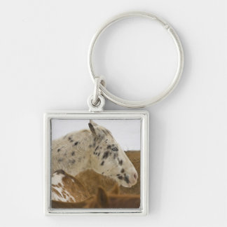 Big Horn Mountains, Horses in The Snow Keychain